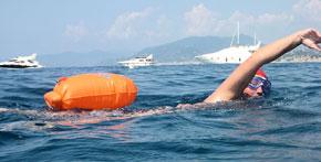 floating-orange-swimming-safe